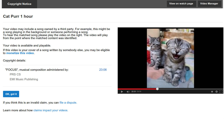 YouTube признал мурчание кота нарушением авторских прав