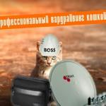 Как взломать Wi-Fi соседа кошкой