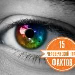 Глаз человека. 15 фактов