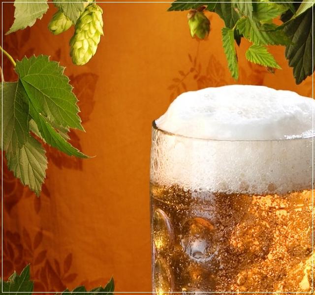 Жить хорошо, а хорошо жить – еще лучше. Десятка полезных свойств пива