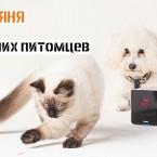 Petcube: Видеоняня для домашних животных