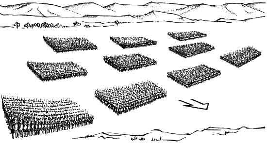 Военные технологии древних римлян: Манипула