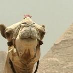 день рождения в египетском стиле