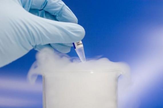 Криоконсервация спермы, ооцитов, эмбрионов