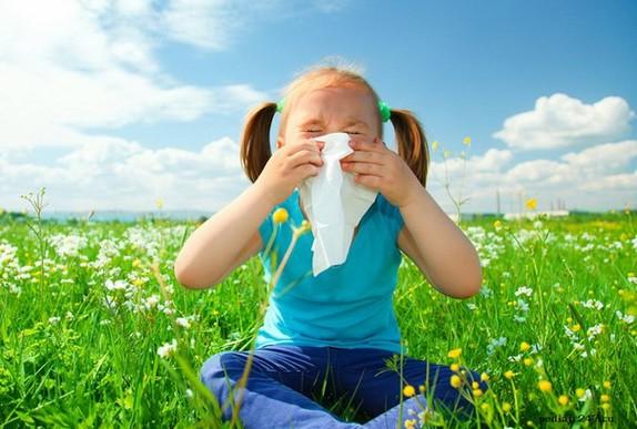 Страх аллергии
